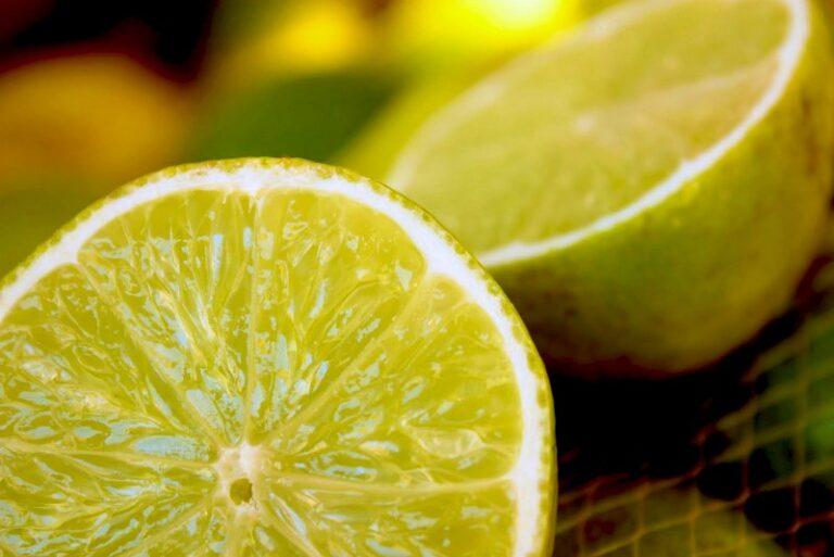 Le proprietà ed i valori nutrizionali del limone